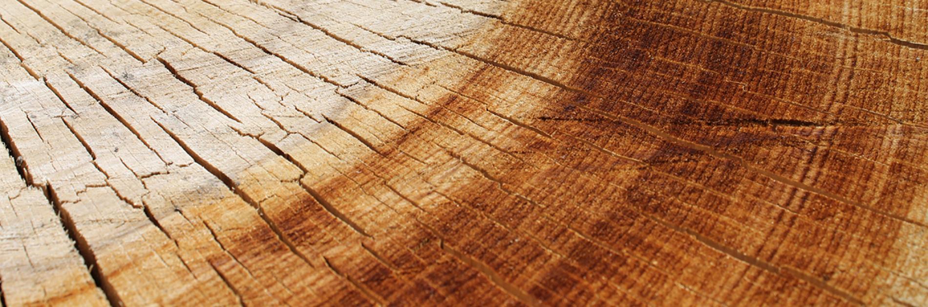 houtBarsten
